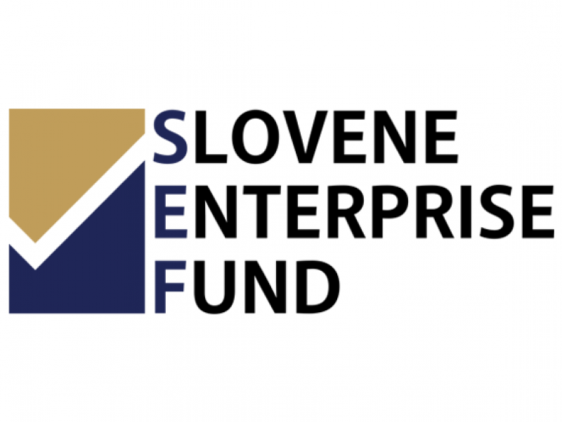 Slovene Enterprise Fund co-financed the project to increase digital competency at Spintec